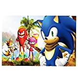 Hedgehog Sonic Backdrop Kids Birthday Party Banner Vinyl 3x5ft Cartoon Photo Background Baby Shower Supplies Photo Booth Props Decorations…