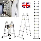 2019 New Design Aluminum 3.8m/12.5ft Folding Telescopic Ladder Extendable 16 Steps, Can Be Straight Or A-Frame Ladder