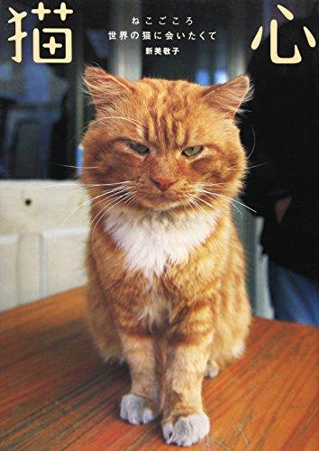 猫心―世界の猫に会いたくての詳細を見る
