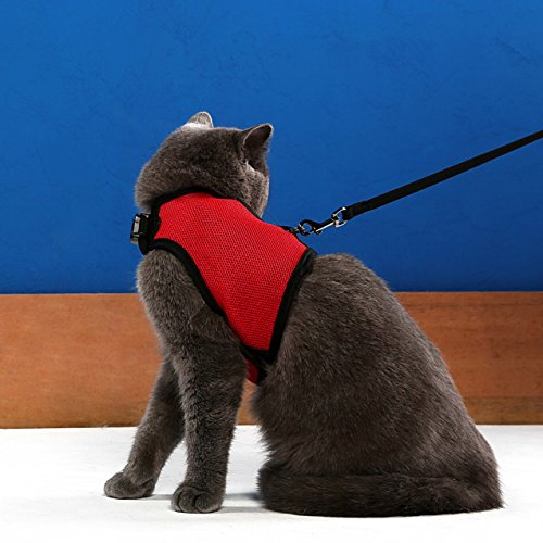 Niteangel 2-Pack of Adjustable Cat Harness