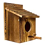 Emerging Green Wooden Bird Houses for Outside Clearance | Wooden Birdhouse | Bluebird House