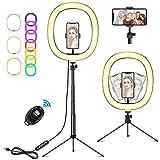 X99 Selfie Ringleuchte Stativ mit Fernbedienung,Tisch Ringlicht mit 3 Farbe und 10 Helligkeitsstufen, Desktop Ring Live Licht für Schöne Fotos oder Videosschooting Live Streaming Portrait Schminken