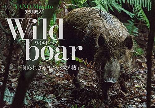 Wild boar(ワイルドボア)知られざるイノシシの「棲(せい)」