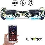 Windgoo Hoverboard 6.5