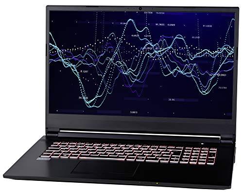 NEXOC Office Notebook (17,3 Zoll Full HD) mit i5-9300H (4,10GHz Turbo!) Intel UHD Graphics 630, 1TB HDD, 16GB DDR4 RAM, Windows 10 (S1728)