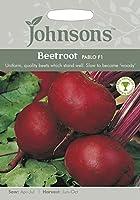 【輸入種子】 Johnsons Seeds Beetroot Pablo F1 ビートルート・パブロ・F1 ジョンソンズシード