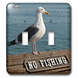 3D Rose LSP_229822_2 California, Santa Barbara, breeding Western Gull on pier with Sign Double Toggle Switch