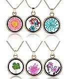 Yumilok Set de 6 colgantes con diferentes flores secas y tréboles, redondos, de cristal transparente y aleación, para mujer