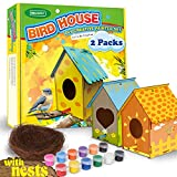 Bird House Kits for Children to Build, with Nests, 2 Pack, Kids Gardening Craft kit, DIY Wooden Birdhouse to Paint, Bird Feeder, for Teens, Boys, Girls