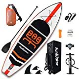 FunWater Inflatable Stand Up Paddle Boards 11'×33'×6' Ultra-Light (17.6lbs) SUP for All Skill Levels Everything Included with 10L Dry Bags, Board, Travel Backpack, Adj Paddle, Pump, Leash, Repair Kit