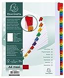 Exacompta - Réf. 4131E - Intercalaires en carte blanche 160g/m2 avec 31 onglets imprimés numériques de 1 à 31 en couleur - page d'indexation imprimable - Format à classer A4 maxi