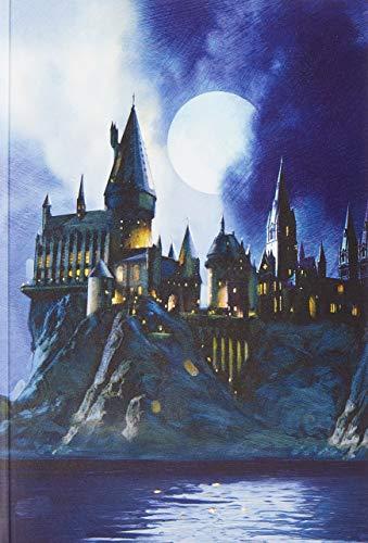 Harry Potter: Hogwarts Pop-Up Card (Reduced Size) (PopCraft)