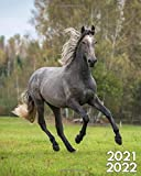 2021-2022: Wild Stallion Two Year Calendar Agenda Organizer: Magnificent Arabian Horse 24 Months Weekly Planner with Vision Boards Notes To-Do's