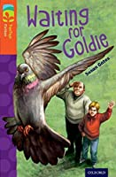 Oxford Reading Tree Treetops Fiction: Level 13: Waiting for Goldie (Treetops. Fiction)