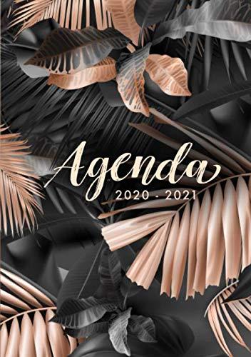 Agenda 2020 2021: Agenda 2020/2021 un Día por Página -...