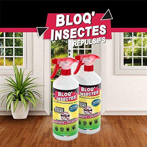 BLOQ'INSECTES Lot de 2