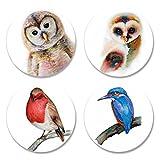 4Pack bedruckt Schneidern Schnittmuster Gewichten. Bird Designs 1(Pack 1von 2) von Künstler...