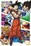 Maxi-Poster Dragonball Super Panels
