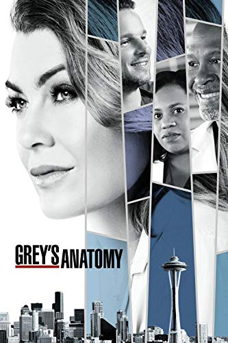 UOBSLBI Jigsaw Puzzles 1000 Pieces Grey'S Anatomy Tv Show Posters Jigsaw Puzzle Sets For Family,Educational Games,Challenge Puzzle For Kids Childrens75*50Cm