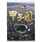 阪神コンテンツリンク 甲子園球場 2020年 カレンダー CL-593 壁掛け A2