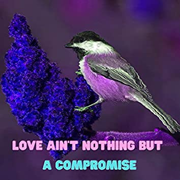 Love ain't nothing but a compromise