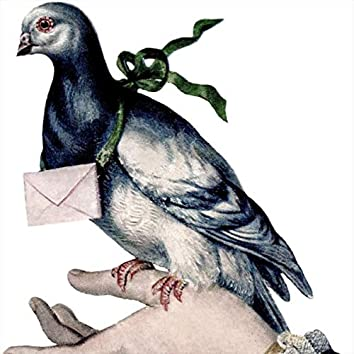 The Pigeon Post