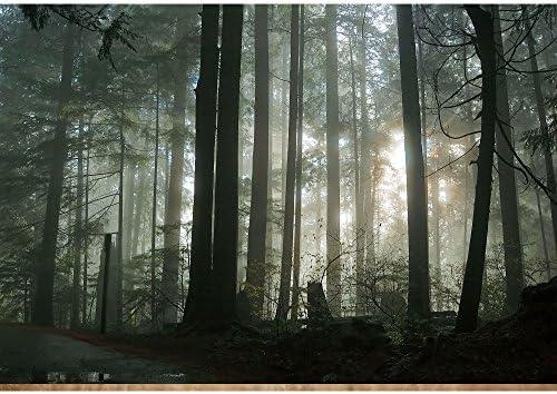 3d forest wallpaper _image1