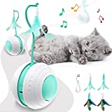 Cat Toy, Interactive Cat Toy, with Bird Sound, LED Light, USB Charging, 360 Degree Self Rotating Ball, Cat Toys for Indoor Cats Smart Balls, Automatic Cat Toy as Cat Gifts