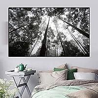 XCDFFJJ 黒と白のキャンバス絵画風景画森の絵画リビングルームの家の装飾のための抽象的な壁の芸術の写真/70X100Cmフレームなし