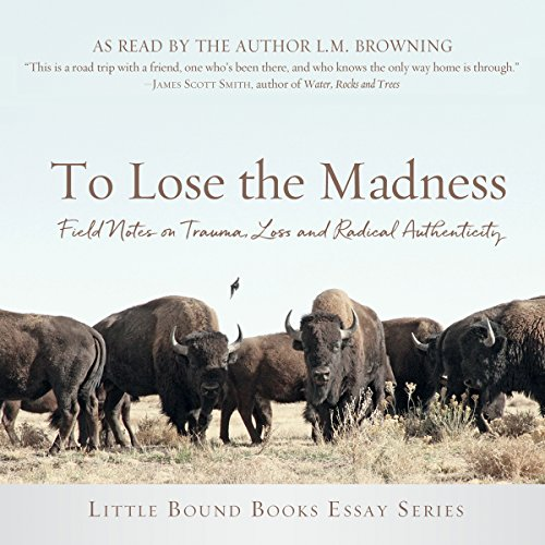 To Lose the Madness audiobook cover art
