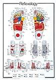 Educational - Bildung - Poster - Reflexology