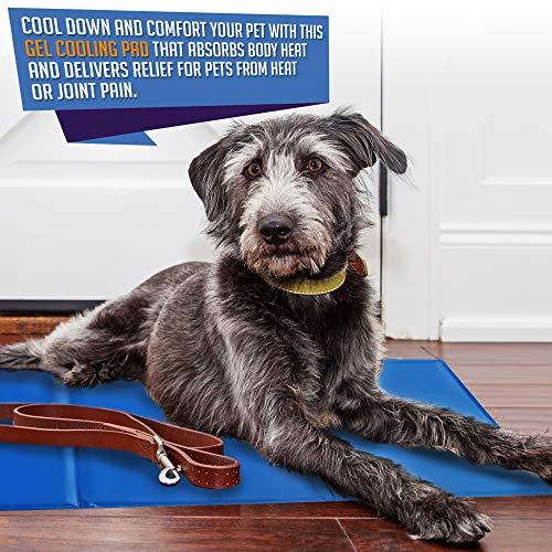 Tappetino Raffreddamento per Cani, Grande 90x50 cm - Tappeto Refrigerante per Animali Domestici Cani Gatti Estate - Impermeabile & Resistente alle Forature - Raffreddamento Auto, Non Tossico.