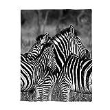 Decorfine Comfy Plush Fleece Throw Blanket 39x49inch Wildlife Animal Zebras Safari Wild Nature Picture Print Soft Coach Blanket Lightweight Stadium Blanket