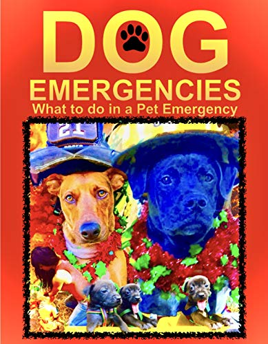 Dog Emergencies: What to do in a Dog Emergency (Everything Dogs) by [Mercy Lopez, Mercedes Roberson]