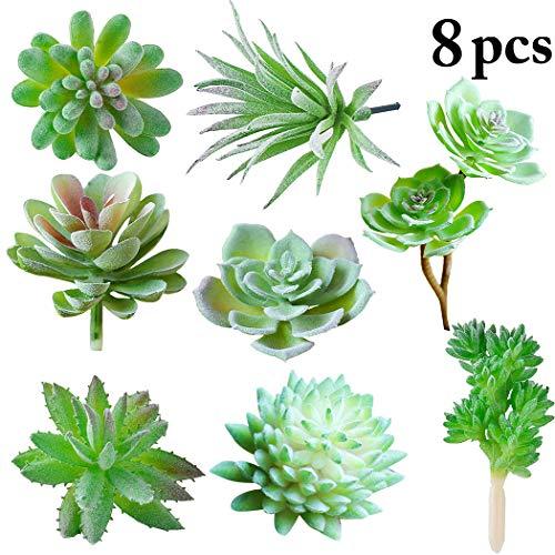 JUSTDOLIFE 8 Stück sukkulenten künstlich Sukkulente Dekor Kreativ Multifunktionale Anlage kunstpflanze klein Gefälschte Pflanze ohne Topf