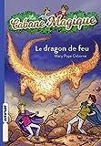 le dragon de feu - la cabane magique