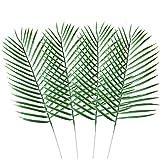 WINOMO künstliche Cycas-Blätter, dekorative Plastikpalmenblätter, für Dekoration im Haushalt oder Büro, 10 Stück