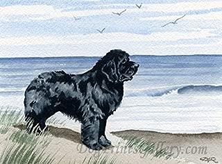 Newfoundland At The Beach Art Print by Artist DJ Rogers