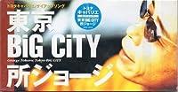 東京 BiG CiTY