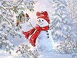 5D Diamant-Mosaik-Schneemann DIY Diamantgemälde Cartoon Weihnachtskarten, quadratisch, Bild von Strasssteinen, Geschenk zu Hause, 50 x 70 cm, quadratische Bohrmaschine