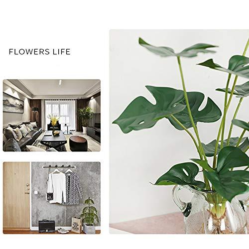 Aisamco Flores