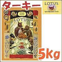 ロータス/LOTUS グレインフリー ターキーレシピ 小粒 5kg