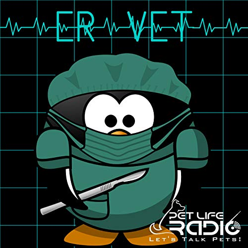 ER Vet - Episode 133 What is Veterinary Hospice With Dr. Mary Gardner Podcast By  cover art