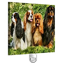 King Charles Spaniels – Cavalier Club Night Light[DoggyLips/Amazon]