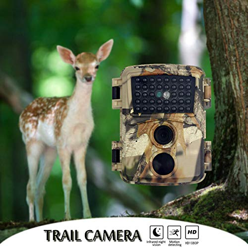 Wildkamera Digital Camera mit Bewegungsmelder Nachtsicht Fotofalle 12MP 1080P Full HD Video Trail Camera