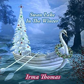 Swan Lake In The Winter