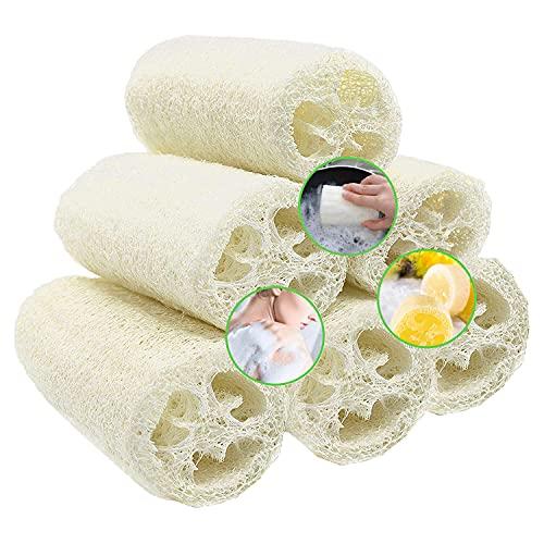 6 Piezas Loofah Natural, Esponjas de Luffa Nature Exfoliante Cuerpo Spa Loofah Scrubber para Baño y Cuidado del espalda, 10cm de Orgánico Esponja Vegetal Lufa para Lavado de Ducha y Limpieza de Cocina