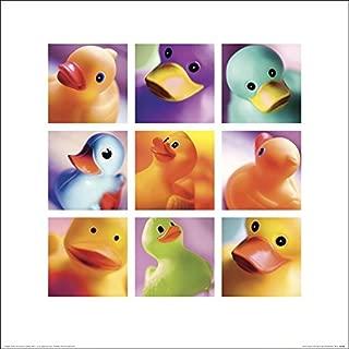 Art Group The Duck Family Portraits Ian Winstanley Print, Paper, Multi-Colour, 40 x 40 x 1.3 cm