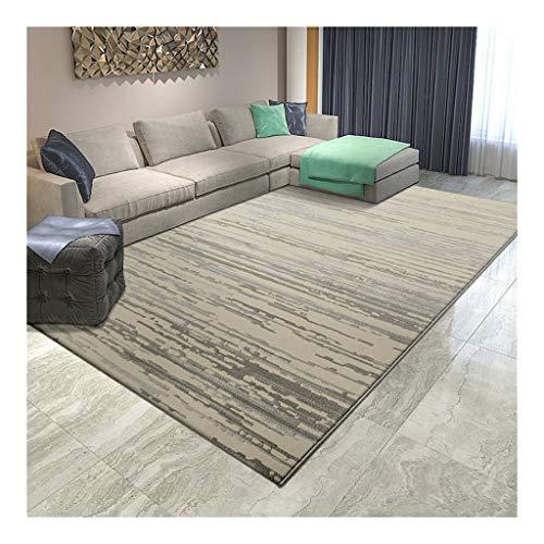 ZJX-F Haariger, Niedrigfloriger Teppich Fühlt Sich Weich An Komfortabel Moderne Einfachheit, Personenaufzug Sofa Kaffeetischdecke Schlafzimmer Bett Teppichmatte (Color : D, Size : 300CM×400CM)