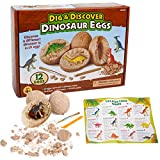 sugoiti Dino Egg Dig Kit Including 12 Different Dinosaurs in Eggs Science STEM Toys for Kids Easter Party Archaeology Paleontology Educational Learning Kids Activity